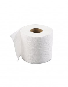 toilet roll - Festival Camping Gear - Pamper The Camper